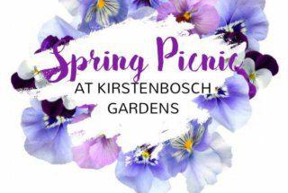Kirstenbosch Gardens Picnic