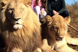 Mariana (BR) and Simon (DE) Walking with Lions