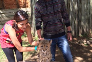 Carolina and Luis at a Cheetah Sanctuary