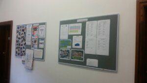 UCT English Language Centre | Notice Boards
