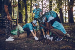 Group of student volunteers planting tree in park