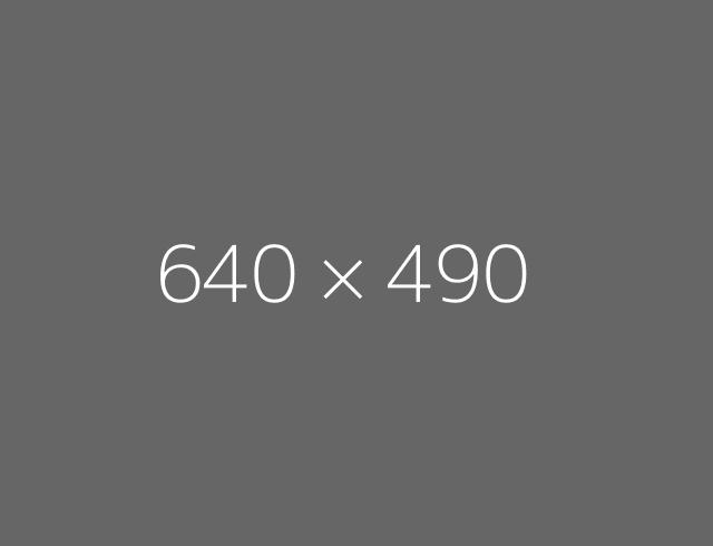 640x490