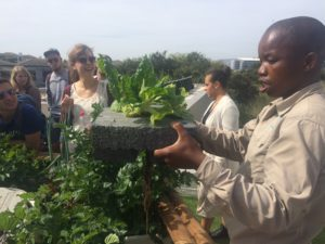 Students learning about the natural environment in Cape Town