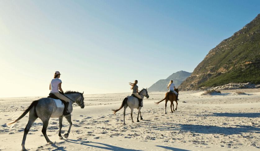 Horse Riding at Noordhoek Beach