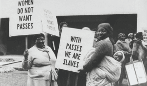 Women stand with placards in a protest